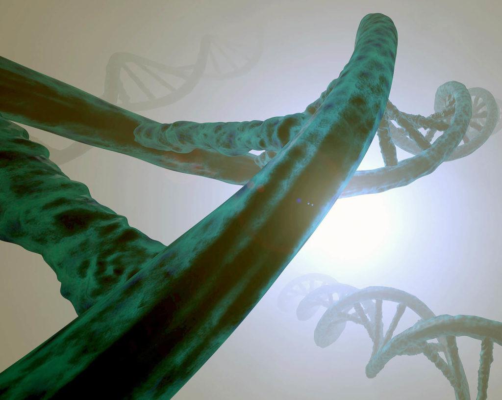 uso de CRISPR en humanos